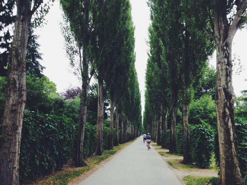 Alternative Things To See And Do In Copenhagen Travel Tips - 10 things to see and do in copenhagen
